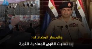 """""""ثورة مصر بين مسارين"""".. دراسة مقارنة بين المسار الثوري والمضاد له"""