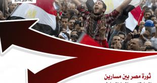 """احجز نسختك الآن من دراسة """"ثورة مصر بين مسارين"""".. مقارنة بين المسار الثوري والمضاد له"""